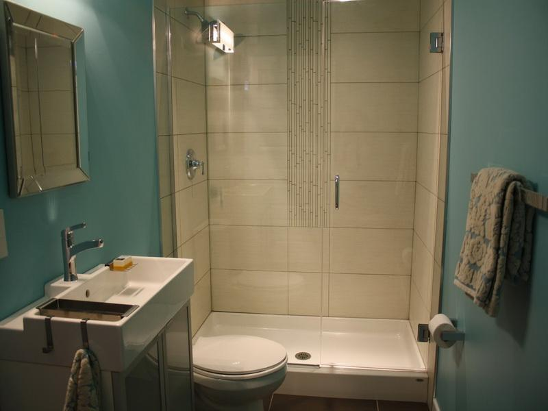 Beau Small Basement Bathroom Design Ideas