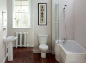 bathroom ideas for a basement