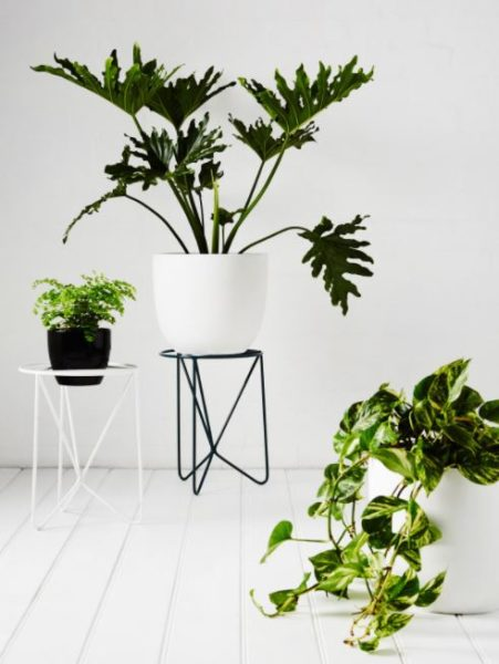 plant stands and tables
