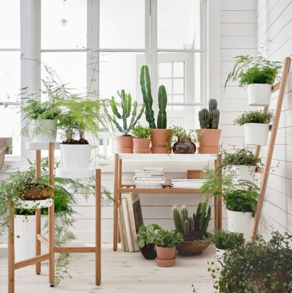 plant stands shelves
