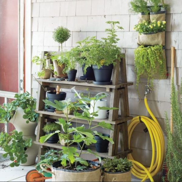 4 tier plant stands