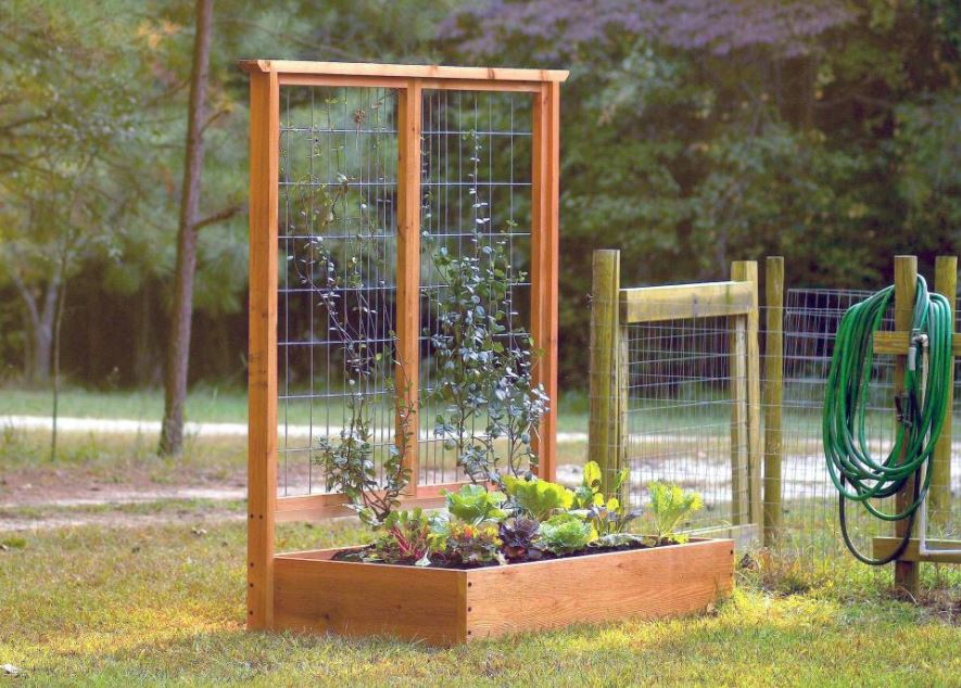 7 awesome diy garden trellis projects for your home. Black Bedroom Furniture Sets. Home Design Ideas